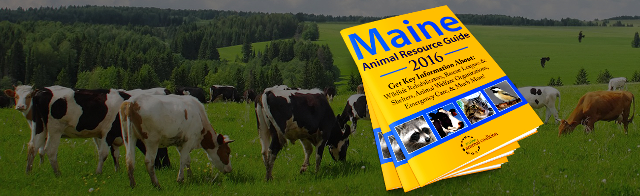 The 2016 Maine Animal Resource Guide
