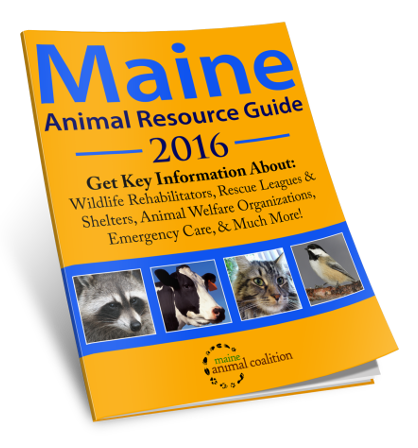 Animal Resource Guide