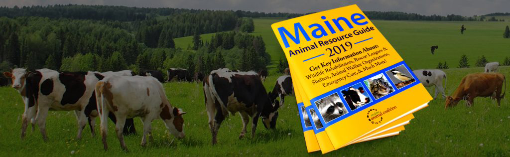 The 2019 Maine Animal Resource Guide